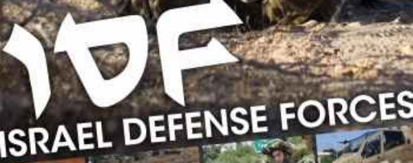 Military Fact Files - IDF