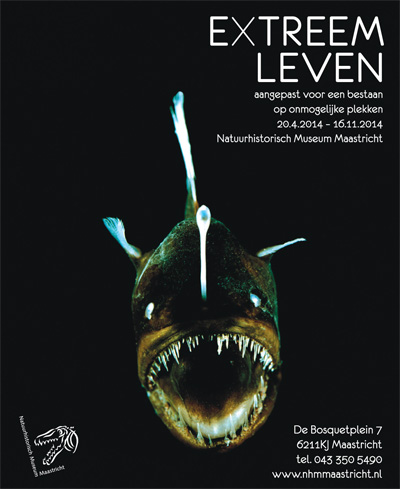 Extreem leven - poster