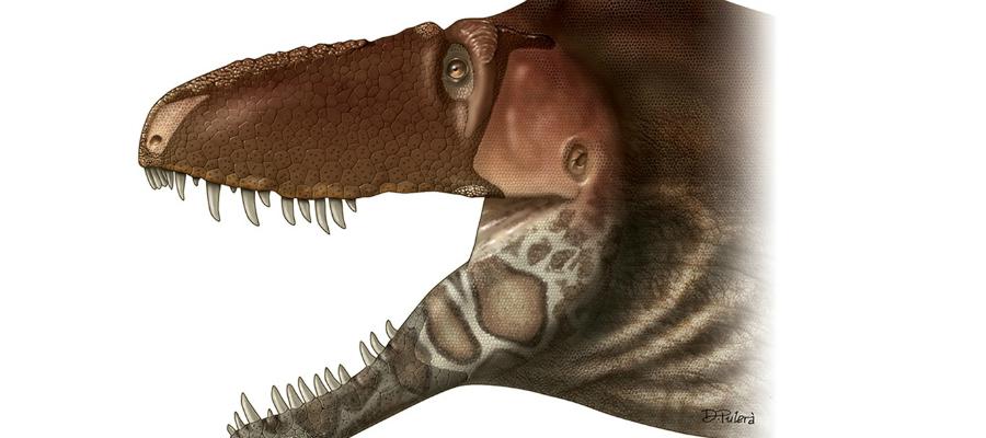 T-rex-voorloper