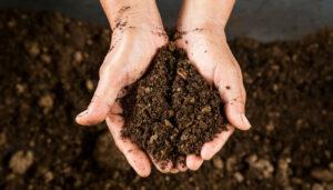 menselijk compost