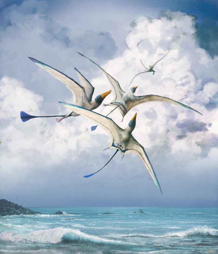 pterosauriërs